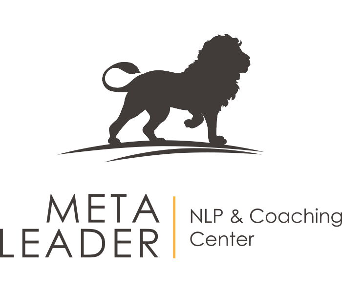 Meta Leader Center